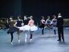Swan Lake Rehearsal