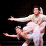 Thumbnail image for The Sleeping Beauty: A Photo Gallery