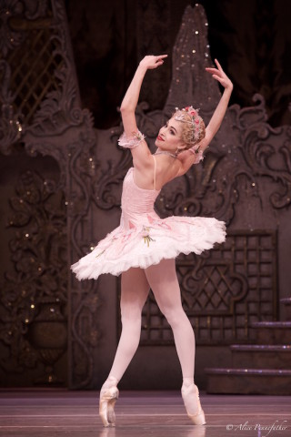 Yasmine Naghi as the Rose Fairy