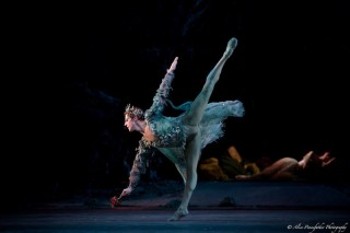 Steven McRae in Ashton's The Dream