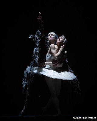 Marianela Núñez as Odette and Bennet Gartside as Von Rothbart in the Royal Ballet's Swan Lake