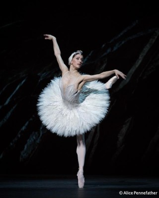 Marianela Núñez as Odette in the Royal Ballet's Swan Lake. Photo: © Alice Pennefather / Courtesy of the Royal Opera House