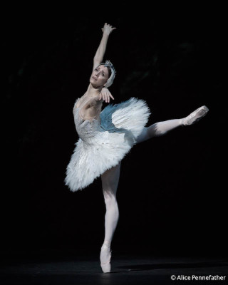 Marianela Núñez as Odette in the Liam Scarlett's Swan Lake
