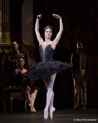 Marianela Núñez as Odile in Liam Scarlett's Swan Lake