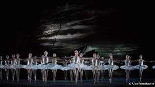 Artists of The Royal Ballet in The Royal Ballet's Swan Lake